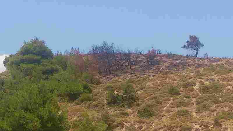 Το σημείο όπου εμφανίστηκε η πρώτη εστία φωτιάς στη Στεφάνη Δερβενοχωρίων
